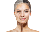 reverse aging and grow younger